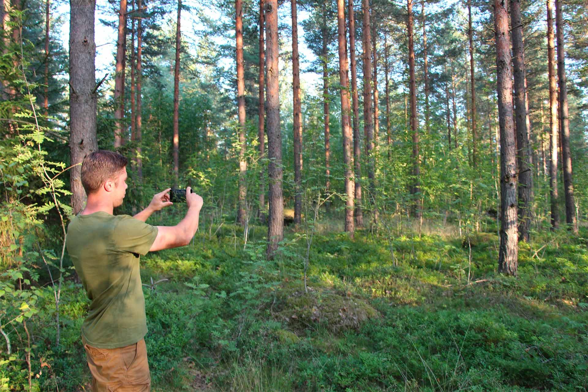 Trestima Oy - Metsänmittaus, metsäarviot